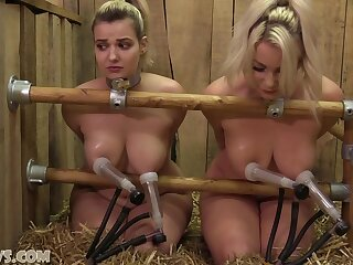 Dolly And Penny Lee On The Double Goat Milker